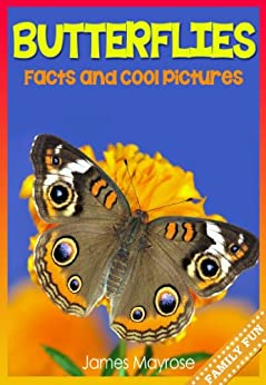 Butterfly Facts and Cool Pictures Animal Photo Books for Kids