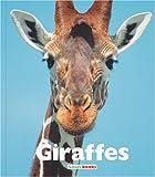 Giraffes, Jenny Markert, 1567668798