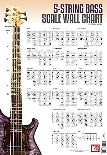 5 string bass scale wall chart corey dozier 9780786685684 amazon rh amazon com