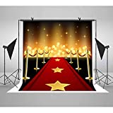 walk in shower pictures LUCKSTY Hollywood Red Carpet Backdrops for Photography 6x6FT Gold Lights Glitter Walk of Fame Photo Backgrounds for Baby Children Birthday Wedding Studio Props LUGE049
