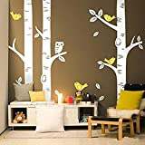 250250CM Cute Owl Birds Large Birch Tree Wall Stickers for Kids Room Wallpaper Mural Baby Nursery Wall Decals Tattoo Forest Home Background Decoration D639 (250cm Tall)