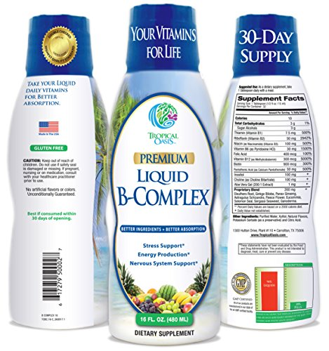 Premium Liquid B Complex Vitamin- Fast Absorbing Liquid B-Complex Supplement w/ all 8 B-vitamins, PLUS energizing herbal blend w/ Ginseng, Ginkgo, and Eleuthero Root – Vegan, NON-GMO – 16oz, 32 Serv