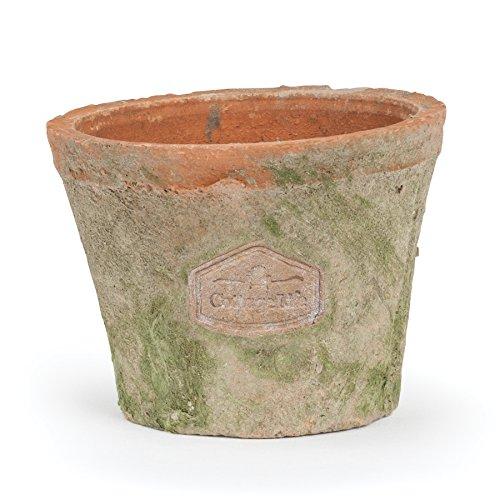 Abbott Collection Grower Terracotta Moss Pot (Large)
