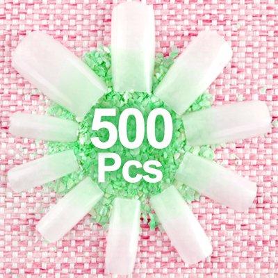 500 Natural Color FULL COVER False (Plastic Nails)