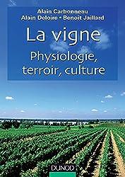 La Vigne - Physiologie, terroir, culture