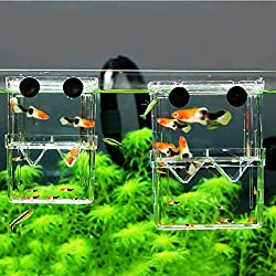 MundoPet Aquarium Breeding Hatchery Incubator Isolation Box Tank for Fish Breeder (M)