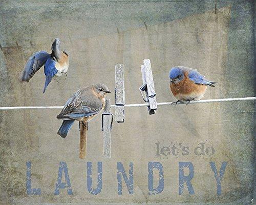 Laundry Day Bluebirds Framed Print 10.67