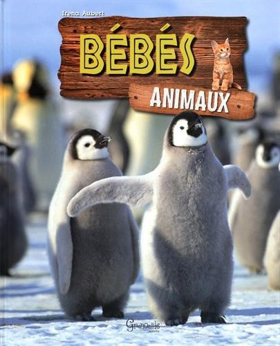 Bébés animaux Album – 1 septembre 2016 Iréna Aubert Grenouille Editions 2366532881 Animaux sauvages