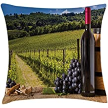 Ambesonne Winery Throw Pillow Cushion Cover, Red Wine Bottles with Grapes on Timber and Tuscany Italian Terrace Scenery, Decorative Square Accent Pillow Case, 16 X 16 Inches, Green Blue Brown