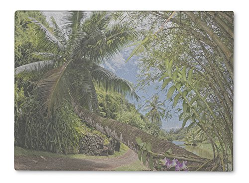 (Gear New Glass Cutting Board and Serving Dish, Arlington Inside Tropical Rainforest Hawaii Set Pirates Caribbean, For Kitchen and Dining, 15x11, 5468677GN)
