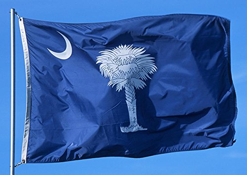 Allied Flag Outdoor Nylon State Flag, South Carolina, 3-Foot by 5-Foot Review