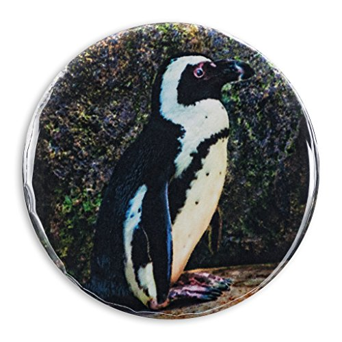 African Penguin Photo Print, 2.25 Inch Pocket Mirror, Refrigerator Magnet or Pinback Button