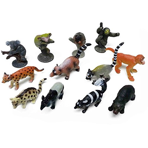 Fun Central (AZ914) 24 count, 2 inch Assorted Rain Forest Animal Figures - Animal Toys, Toy Animal Figures, Toys for Kids, Educational Toys -Birthday, Christmas, Halloween, Party Favors - 2packs of 12