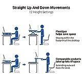 FlexiSpot Standing Desk Converter 41 Inch Height
