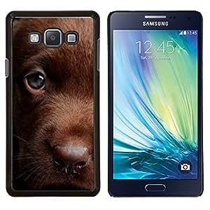 EJOOY---Cubierta de la caja de protección para la piel dura ** Samsung Galaxy A7 A7000 ** --Retriever chocolate Labrador de oro