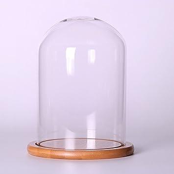 C 10x15cm LOVIVER D/ôme D/écoratif en Verre avec Cloche Transparente avec Socle en Bois /à LED F 12x20cm