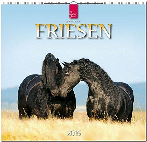 Friesen 2016: Original Stürtz-Kalender - Mittelformat-Kalender 33 x 31 cm [Spiralbindung]