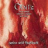 Amino Acid Flashback by Ohm (2005-05-03)