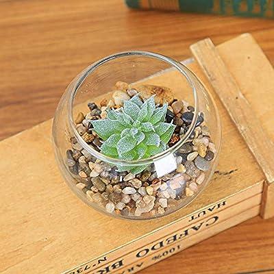 Geboor 11 Pcs Artificial Succulent Plants Unpotted Assorted Faux Succulent Fake Succulent Picks for Floral Arrangement Home Decoration