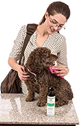 PetSimplicity Dry Waterless Natural Pet Shampoo Conditioner and Deodorizer for Dogs and Cats, Light Bamboo and Mint Scent, 8oz