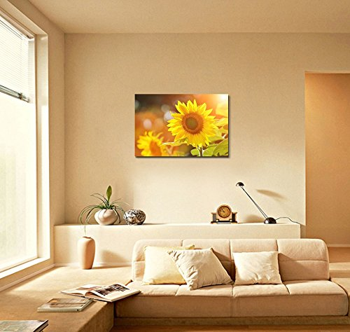 Big Beautiful Yellow Sunflowers in a Sunny Day Wall Decor