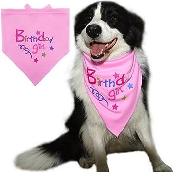 Pandada Happy Birthday Bandana Pour Chien Foulard Rose En Coton