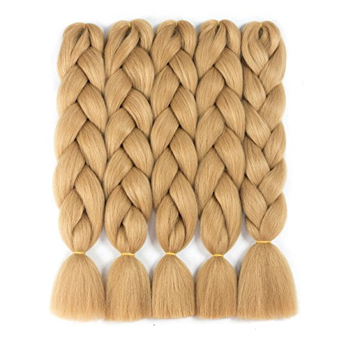 Alissa Jumbo Braiding Hair Extensions High Temperature Kanekalon Synthetic Ombre Twist Hair Multiple Tone Colored Jumbo Braiding Hair (24, 27#)
