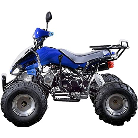 Buy Gapuchee Viper Atv Bike Blue Online At Low Prices In India