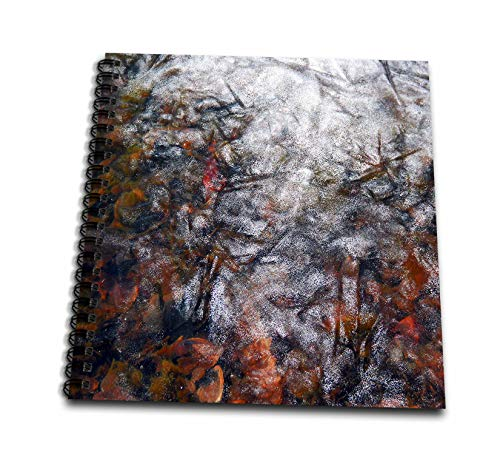 3dRose Stamp City - Nature - Photograph of Autumn Leaves Frozen Under Lake Entrance. - Drawing Book 8 x 8 inch (db_289773_1)