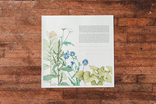 Milkweed Herbal Ketubah | Jewish/Interfaith/Quaker Wedding Certificate | Hand-Painted Watercolor, Giclée Print by Tallulah Ketubahs