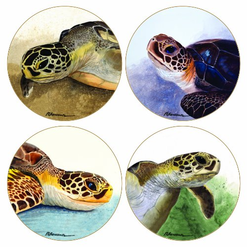 CoasterStone AS1815 Absorbent Coasters, Sea Turtles, 4-1/4-Inch, Set of 4