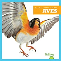 Aves/ Birds