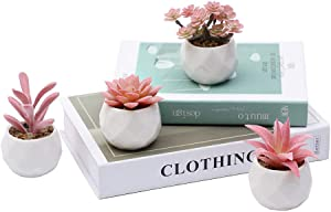 MEET ROSE Set of 4 Small Artificial Succulent Plants with Pot Faux Succulent Plants for Desk Decoration Realistic Fake Succulent Plant for Home Decor Indoor,Red