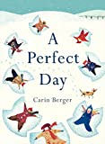 img - for A Perfect Day book / textbook / text book