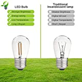 LED Outdoor String Lights 48FT with 2W Dimmable