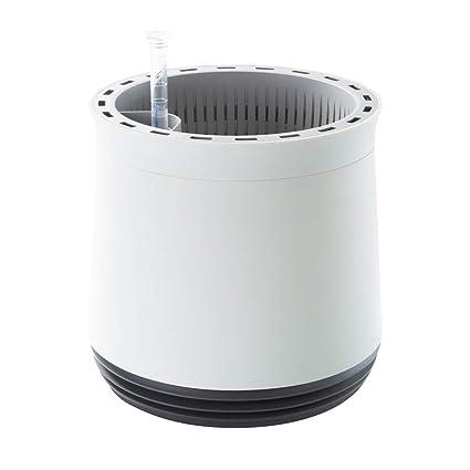 AIRY pot - Natürlicher Luftreiniger für Allergiker - Patentierter  Pflanztopf als Filter gegen Schadstoffe, Haus-Staub, Pollen, Geruch,  Allergie (grau)