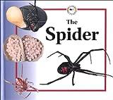 The Spider, Sabrina Crewe, 0817243801