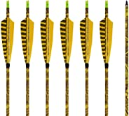 """31Inch Carbon Arrow Practice Hunting Arrows with 5"""" Camo Natural Feathers for Compound & Traditional"""