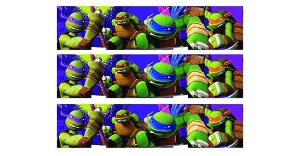 Amazon.com: TMNT Teenage Mutant Ninja Turtles Comestible ...