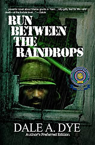 book cover of Run Between the Raindrops
