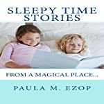 Sleepy Time Stories: From a Magical Place | Paula M. Ezop