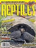 Reptiles: more info