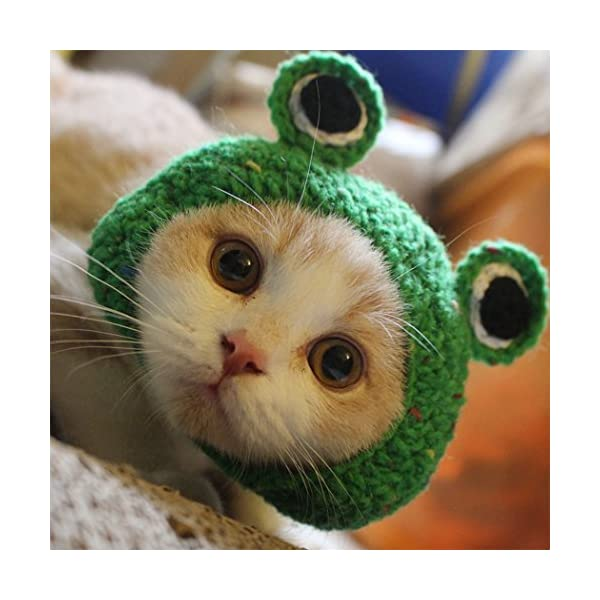 Hillento Pet Hat - Dog Cat Pet Cap Handmade Knitted Woolen Yarn Hat for Puppy Teddy Cartoon Frog Animal Dog Cat Grooming Accessories Apparels 1