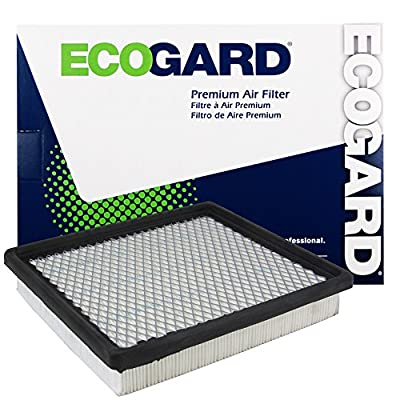 Ecogard XA5396 Premium Engine Air Filter Fits Dodge, Grand 3.8L 2.4L 2009-2020, Caravan 3.3L 2001-2007, Journey 3.5L 2009-2010: Automotive