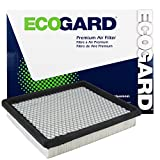 ECOGARD XA5396 Premium Engine Air Filter Fits Dodge Grand Caravan 3.3L 2001-2007, Grand Caravan 3.8L 2001-2007, Journey 2.4L 2009-2019, Caravan 3.3L 2001-2007, Journey 3.5L 2009-2010