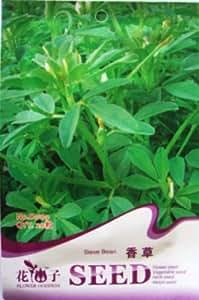 (Orden de la mezcla mínimo $ 5) 1 paquete de 20 uds originales Sweetgrass semillas de hierbas fragantes tamiz de haba