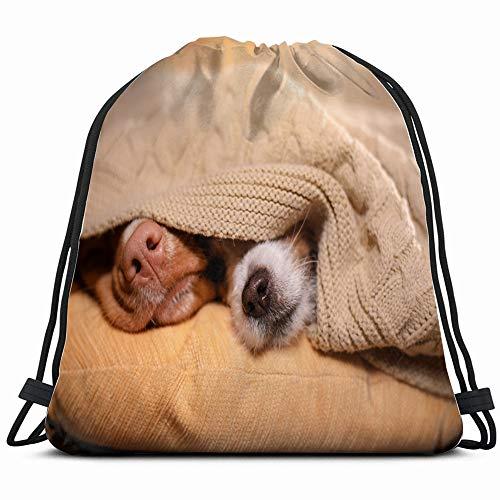 Dog Jack Russell Terrier Nova Animals Wildlife Interiors Drawstring Bag Backpack Gym Dance Bag Reversible Flip Sequin Bling Backpack For Hiking Beach Travel Bags ()