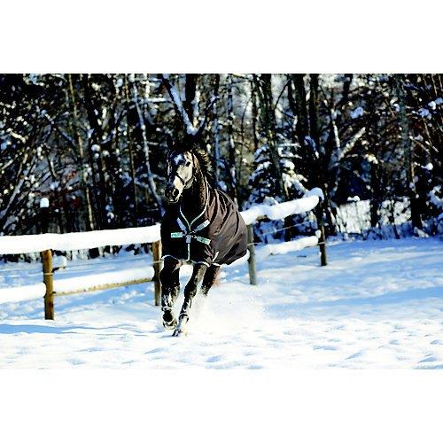 Amigo Horseware Bravo 12 Wug Medium Excal Silver 81 Neck Turnout Horse