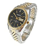 Swanson Japan Men's Gold-Plated and Stainless Steel Two-Tone Day-Date Watch Black Dial