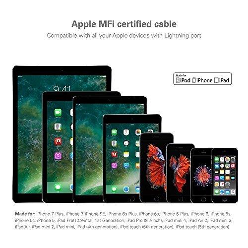 iPod Touch et autres Chargeur iPhone Cable--argent ARTLU/® 1 m printemps spirale c/âble USB USB printemps spirale c/âble Cordon pour iPhone SE // 6s // 6s Plus // 6 Plus // 6 // 5 // 5C // 5S iPad mini iPod nano Air iPad Pro